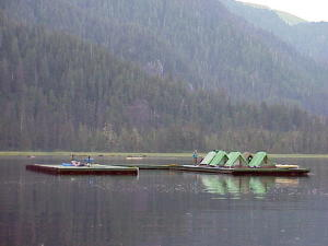 "Floating docks with ""tent city"""